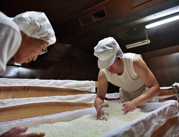 Sake brewers mixing Koji with steamed rice