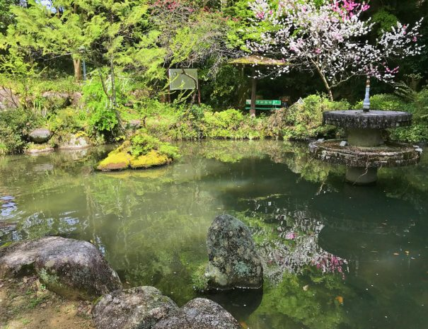 A beautiful pond in the countryside town of Japan