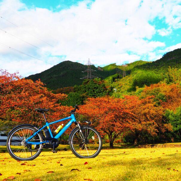 紅葉とE-Bike