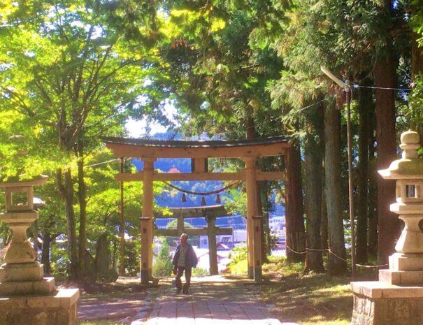 神社の参道を歩く男性